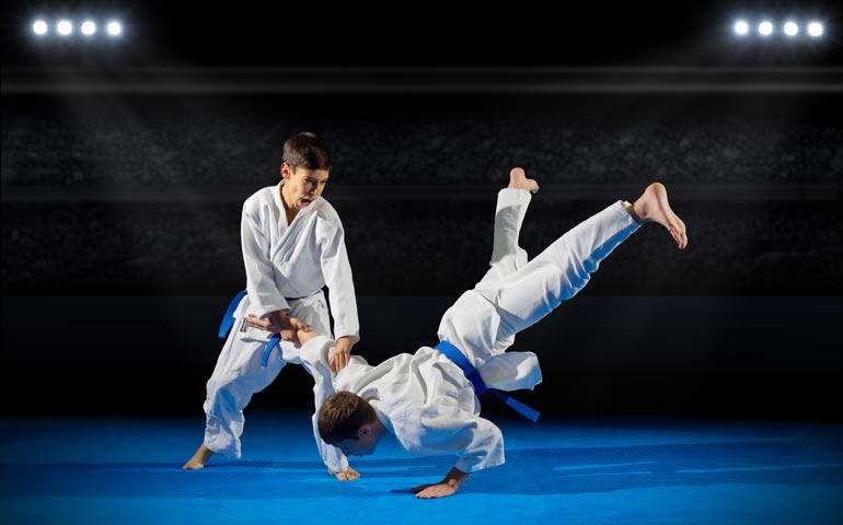 aïkido japonais